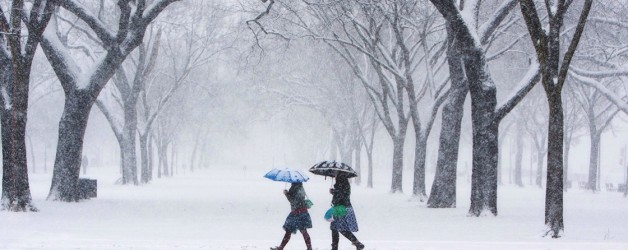 winterization-home-memphis